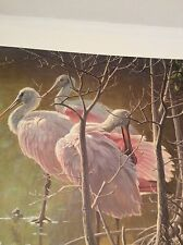 Robert Bateman Mangrove Morning Roseate Spoonbills 316/2000 Low # Hand Signed