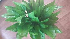 Joblot of 24 Large Green leaves Silk Artificial foliage wholesale Lot D