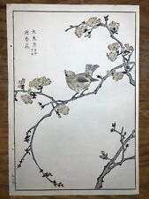 Original Japanese Woodblock Print Maekawa Bunrei Birds of Japan Brown Bird #6