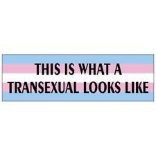 Transexual Pride Bumper Sticker Trans LGBTQ Rights Resist Resistance March