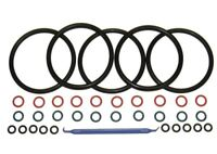 5 Sets COLOR CODED Gasket Set for Cornelius Home Brew Keg [w/ O-Ring Pick]