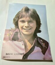 David Cassidy vintage 1970s CONCERT POSTER by COFFER