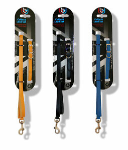 Dog Collar Dog Lead Leather Puppy Collar and Lead Set