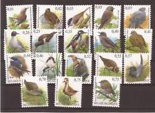 Buzin vogels in EURO2