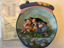 Winnie the Pooh Hunnypot Adventures 3D Plate Bradford Exchange Coa 'Weather�