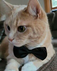 Dog Cat Animal Cute Bow Tie Collar Pet Adjustable Neck Tie Tuxedo US Ship