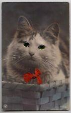 "POSTCARD - novelty ""glass-eye"" cute tabby cat in basket & red bow"