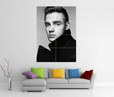 LIAM PAYNE ONE DIRECTION 1D TAKE ME HOME THIS IS US GIANT POSTER H244