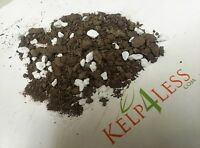 The Best Compost Perlite Blend Potting Mix 15 LB Organic FREE SHIPPING in USA