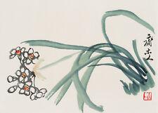 Qi Baishi (China, 1864-1957), Weiße Schlüsselblume, 1953, Farbholzschnitt