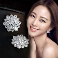 Women's Drop Shaped Eardrop Dangle Earrings Ladies Fashion Earring Jewelry JA