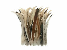 """Wholesale Pack - 8-12"""" Natural Beige Mix Coque Tail Strung Rooster Feathers 2 Oz"""