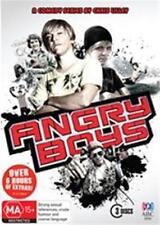 ANGRY BOYS : NEW DVD