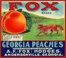 Andersonville Georgia GA Fox Peach Georgia Peaches Fruit Crate Label Art Print