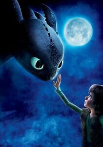HOW TO TRAIN YOUR DRAGON Movie PHOTO Print POSTER Film Art Hiccup Toothless 004