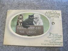 1915 Birthday greeting postcard -  Kittens Keep off the grass -  cat interest