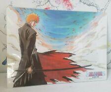 Bleach Pencil Board Shitajiki Ichigo Kurosaki Official Anime Manga Japan