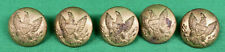 New listing Orig Lot of 5 Civil War Era Brass Army General Service Buttons Extra Quality