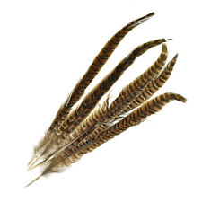 Long Loose Striped Quill Feathers, Brown, 5-Piece