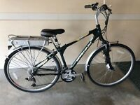 Schwinn World GS Electric Bicycle