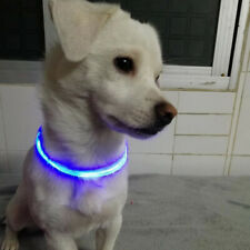LED Neck Strap Pet Collar Luminous Adjustable Night Safety Collar Water Resistan