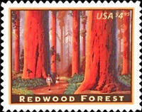 Redwood Forest CALIFORNIA Mint NH Priority Mail Stamp  Scott  #4378 Issued 2009
