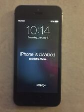 iPhone 5s 16gb Space Gray Disabled Connect to itunes