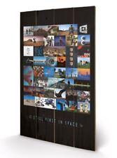 Pink Floyd - 40th Anniversary (stampa su legno 76x45cm)