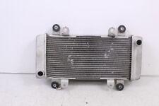 2014 KAWASAKI NINJA EX 300 Radiator Cooler
