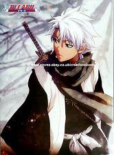 """A2 25"""" x 16"""" Laminated Bleach Hitsugaya Toshiro Poster (BLLP4)"""