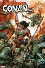 Conan Savage Sword Poster by Alex Ross New Rolled