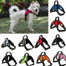 Pet Harness Dog Vest Collar No Pull Lead Walking Training Chest Nylon Strap S-XL
