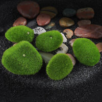 Marimo Stone Moss Miniature Dollhouse Garden Craft Fairy Bonsai Plant Decor Kd