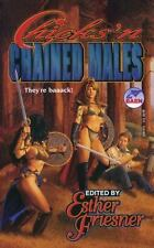 Chicks in Chainmail, Esther Friesner,0671876821, Book, Good