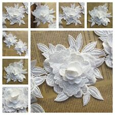 Embroidered Flower Lace Trim Ribbon Dress Decoration Garment Gallant Accessories