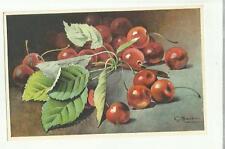 137910 stupenda cartolina artistica frutta di s. bonelli