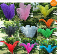 Wholesale,10-100pcs 12-14inch High Quality Natural OSTRICH FEATHERS