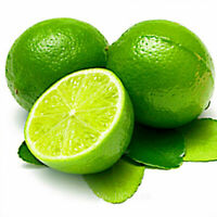 20x Thai Organic Key Lime Aurantifolia Seeds Citrus Lemon Seeds Fruit Seeds