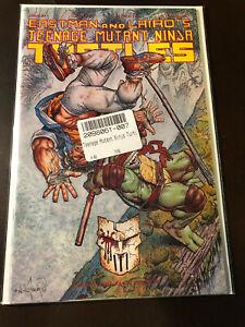 Teenage Mutant Ninja Turtles 49 NM+ Mirage TMNT T-163