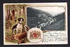 114040 AK Bad Rippoldsau 1902 Präge Litho Jagdhund Reh Wappen
