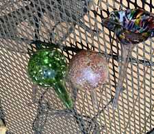 Self Watering Plant Bulb Glass Water Globes- Gardening (3)