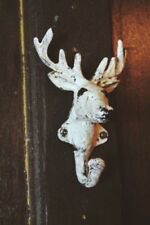 Stag Head Metal Wall Hooks & Door Hangers