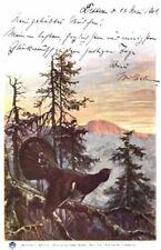 21893/ Künstlerkarte E. Döcker, Im Forst, Serie X, 1900