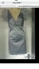 Stunning NEW Special Edition Red Herring Debenhams silver grey dress size 8
