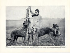 SCOTTISH DEERHOUND LADY OWNER AND COURSING DOGS OLD ORIGINAL 1934 DOG PRINT PAGE