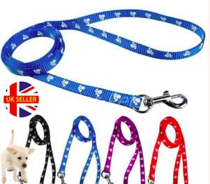 Soft Nylon Puppy Obedience Walking Lead / Small Dog Recall Training Leash