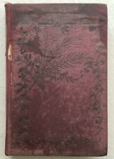 Old Book A YELLOW ASTER by IOTA , Kathleen Mannington Caffyn c.1890's
