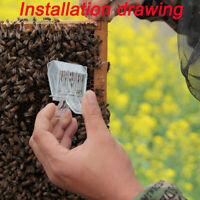 1PC Beekeeping Bee Catcher Tool Queen Clips Bee Catcher Cage Beekeeper Equip