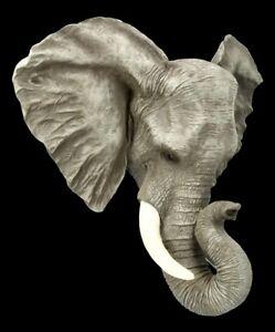 Rilievo Parete - Testa di Elefante Giardino Decorazione Statua Scultura H 45 CM