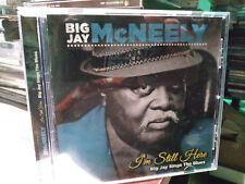 BIG JAY McNeely I'm Still Here Big Jay Sings The Blues CD Baby Please Don't Go